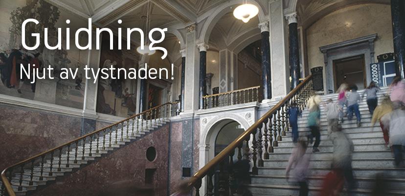 startsida-guidning